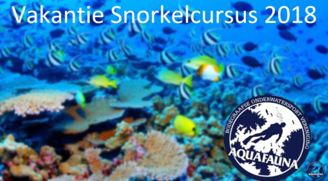 Op 24 mei gaat de Vakantie Snorkel Cursus weer van start!